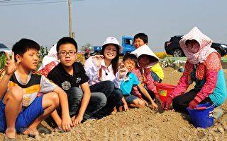 图片新闻:户外教学 学童体验农村生活