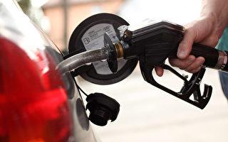 今夏汽油價格或攀升至10年新高