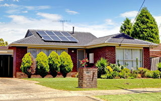 太陽能電池——在陽光普照的同時發電