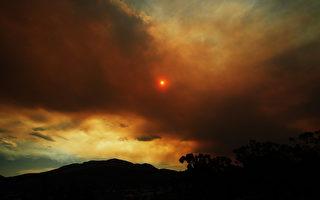 紐省高溫愈40度 南部多處山火無法控制