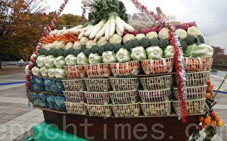 """经济又艺术的""""蔬菜宝船"""""""