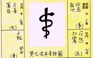 2013流年吉中藏凶 命理預測蛇年國運