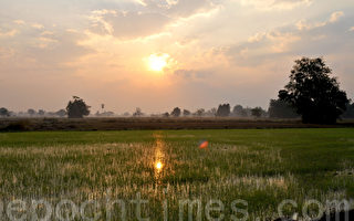 組圖:泰國素可泰幸福的黎明