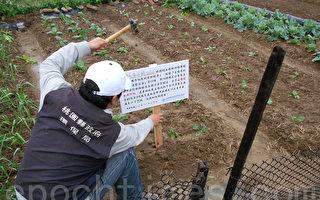 桃園土壤及地下水整治  績效卓著