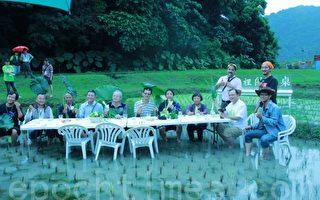 绿博稻田里用餐  提供游客免费品尝