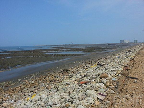 观新藻礁成为环保团体关注重要目标(摄影:徐乃义/大纪元)