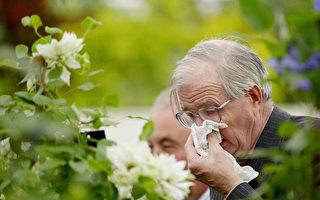 春季過敏源增多 防護需加強