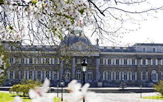 组图:比利时王家花园对公众开放(三)