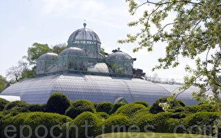 組圖:比利時王室花園對公眾開放(一)