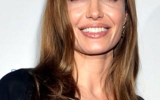 美国知名女星安吉丽娜.茱莉投书媒体披露自己接受预防性双乳切除术。(Daniel Zuchnik/Getty Images)