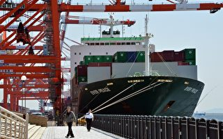 中國貨櫃運到日本 驚見「300多隻紅火蟻」