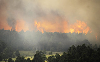 澳洲野火烧掉3个台湾 恐还得再烧1个多月
