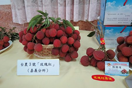 """正牌台农3号""""玫瑰红""""荔枝,具有玫瑰香气。 (苏泰安/大纪元)"""