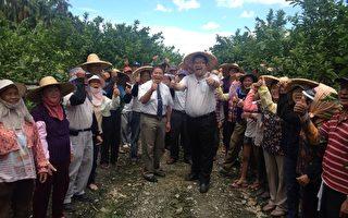 清玉屏東農地契作 產業結合檸檬產銷再升級