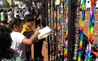 千纸鹤祈祷和平 日裔美人纪念广岛核爆68周年