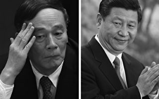 """德媒揭秘习、王""""打虎""""四大案 涉十七大常委"""