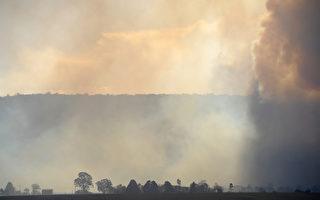 新州进入山火紧急状态 禁火令持至周六午夜