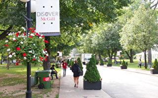麦吉尔痛失全加拿大大学第一排名