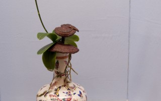聖地亞哥櫻花花道協會第三屆插花展舉行