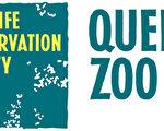 """皇后区动物园将推出2013金秋""""哞在动物园""""盛大活动。(图片由皇后区动物园提供)"""