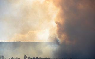 """浓烟笼罩 悉尼空气质量低过""""危险""""水平"""