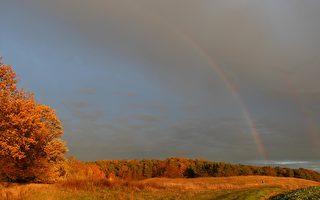 今月:彩虹