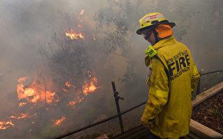纽省开始对蓝山山火起因展开调查