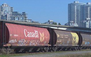 卑诗亚省研讨铁路运输石油的可行性