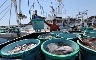 韩禁日水产进口 WTO终判日本败诉