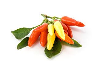 適應多變天氣妙方 天然食物助你調節體溫