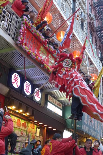 獅子要登高才能採到高掛在二樓的「青」。圖為竹林寺螳螂派的舞獅隊2014年2月8日在唐人街表演採青。(蔡溶/大紀元)