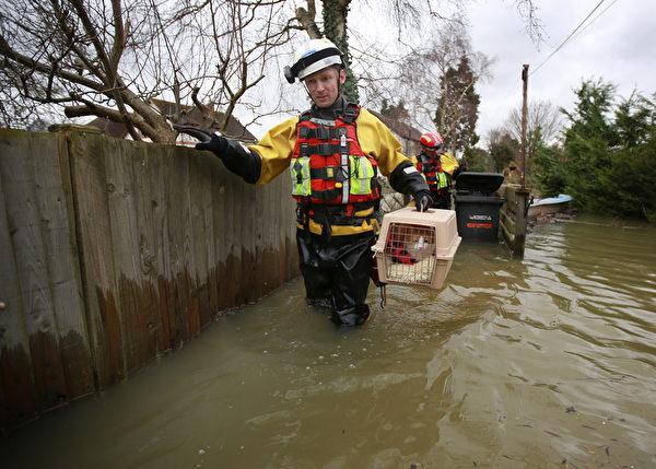 英國部份地區連日降雨,泰晤士河沿岸多地決堤,一些村莊被洪水淹沒。圖為防虐動物協會水上救援隊救出寵物貓。(Peter Macdiarmid/Getty Images)