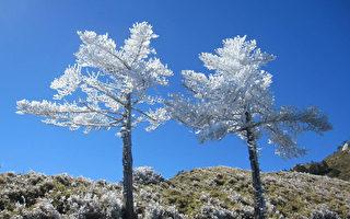 雪封嘉明湖步道積雪  暫緩登山