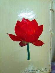 20年来《转法轮》封底纸上花蕾渐渐绽放(图片由作者提供)