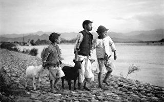 李鸣雕的摄影作品《牧羊童》。(创价学会提供)