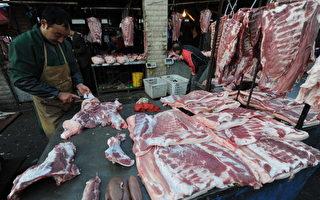 陆猪肉跌成白菜价仍乏人问  大量养殖户破产