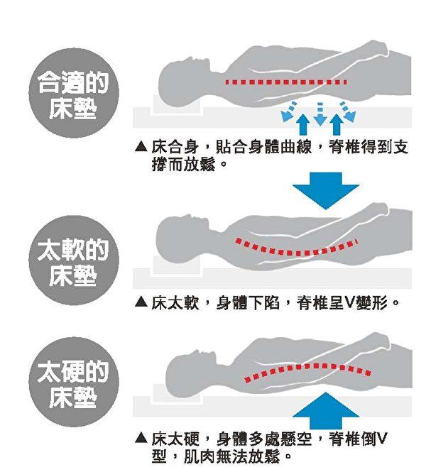 脊椎图。(图:大纪元资料库)