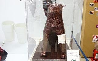 甜蜜真情 60公斤巧克力忠犬八公