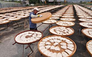 漫遊台南 體驗傳統產業與生態之美