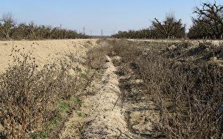 研究:加州乾旱與全球暖化有關