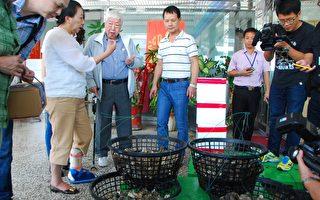 参访东石牡蛎 南侨集团推农产美食盛宴