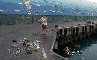 老外港湾捞垃圾  逾6千人按赞