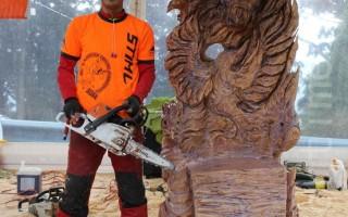 首届澳洲电锯木雕大奖赛日本艺术家拔头筹