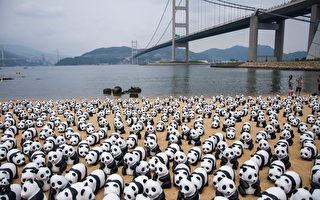 纸熊猫游香港 郭富城张曼玉尽地主之谊