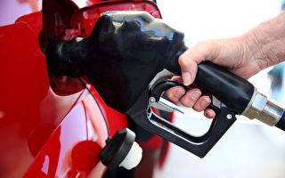 伊拉克动荡 美国油价未来2周或飙新高