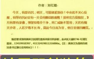 刘红霞:寻衅滋事罪扩大化让豺狼狂笑