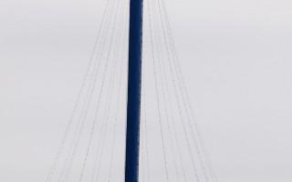南加海洋世界缆车故障 游客悬空数小时