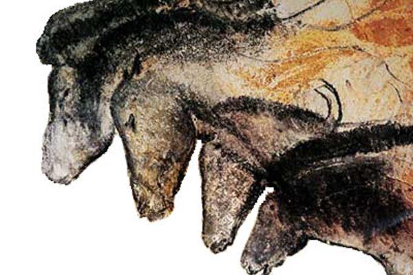 擊潰進化論 三萬年前的動畫讓人目瞪口呆