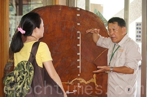 國家森林李姓志工和遊客解說台灣檜木的種類。(詹亦菱/大紀元)