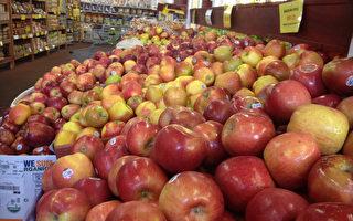 夏日選購新鮮蔬果 農夫市場種類多